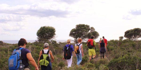 Yogaferien und wandern auf Mallorca