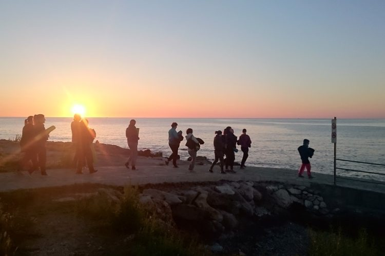 Yoga und Meditation am Meer: Yogaferien auf Mallorca