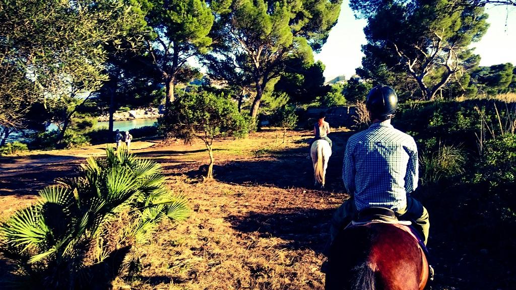 Yoga und Reiten auf Mallorca