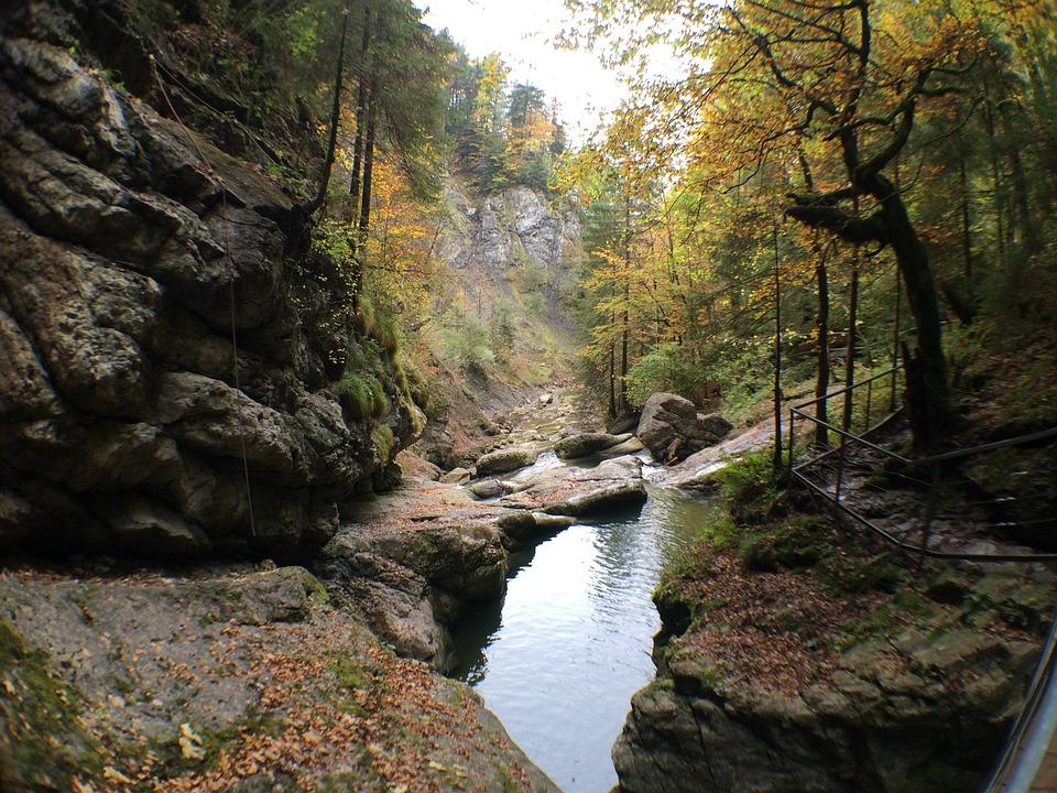 Naturlandschaft nahe Sonthofen