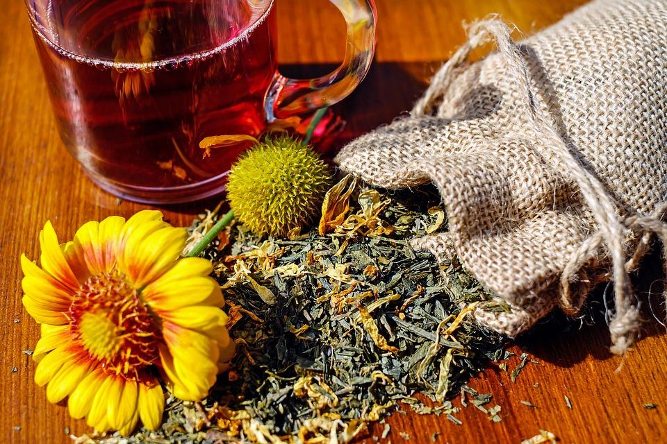 Pflanzen und frischer Tee