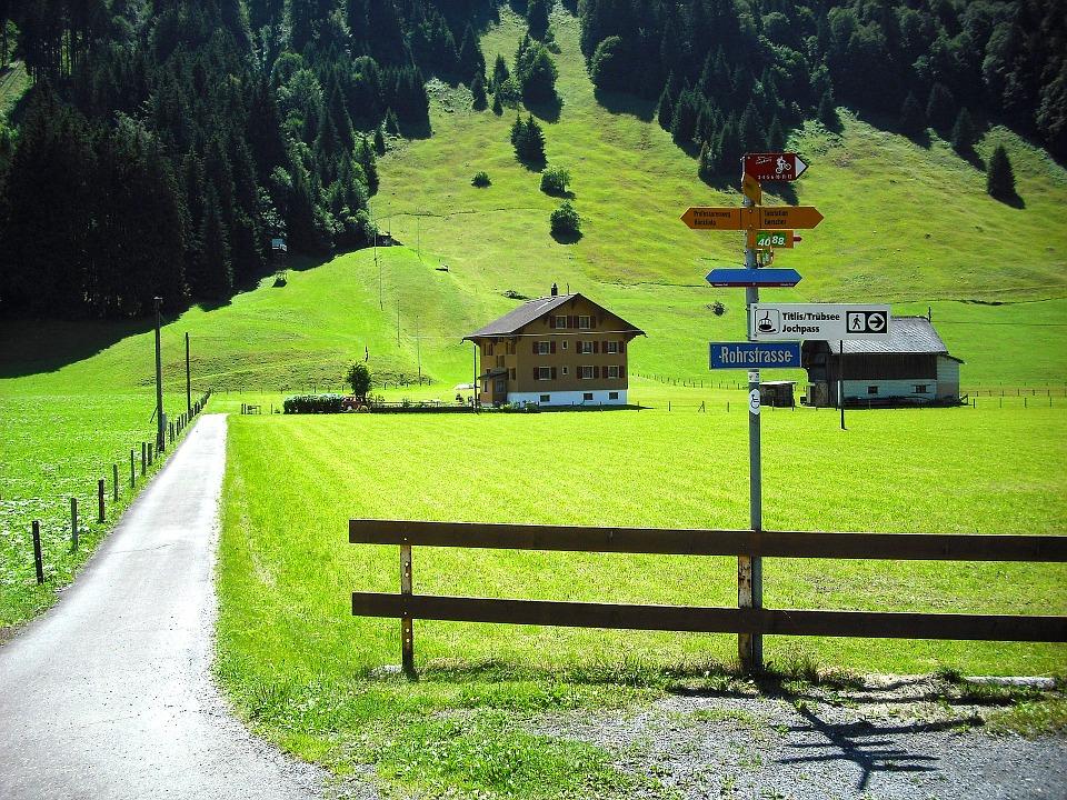 Kloster auf Zeit: Blick auf sattgrüne Wiesen