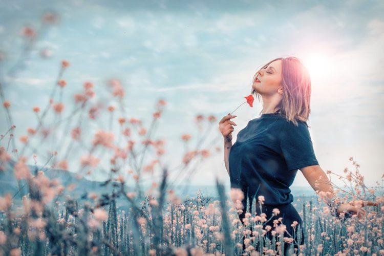 Ayurveda Heilkräuter und Gewürze für ein gesundes Leben