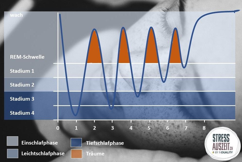 Unterschiedliche Schlafphasen von Einschlafphase bis hin zu Tiefschlafphase
